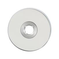 GPF1100.40 RVS pol ronde rozet 50x8mm