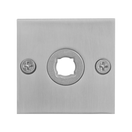 GPF1100.08 rozet 50x50x2mm RVS geborsteld