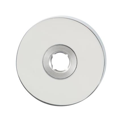GPF1100.40 rozet 50x8mm RVS gepolijst